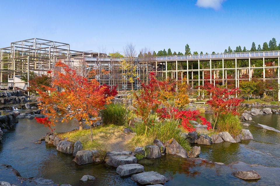 秋の水景園