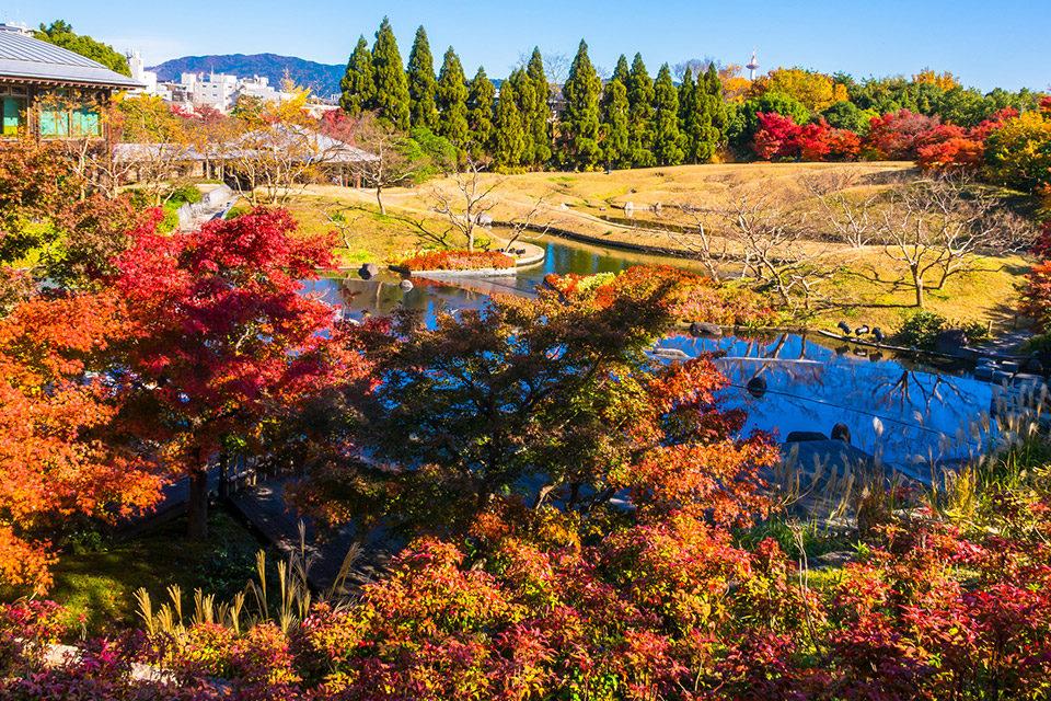 京都梅小路公園