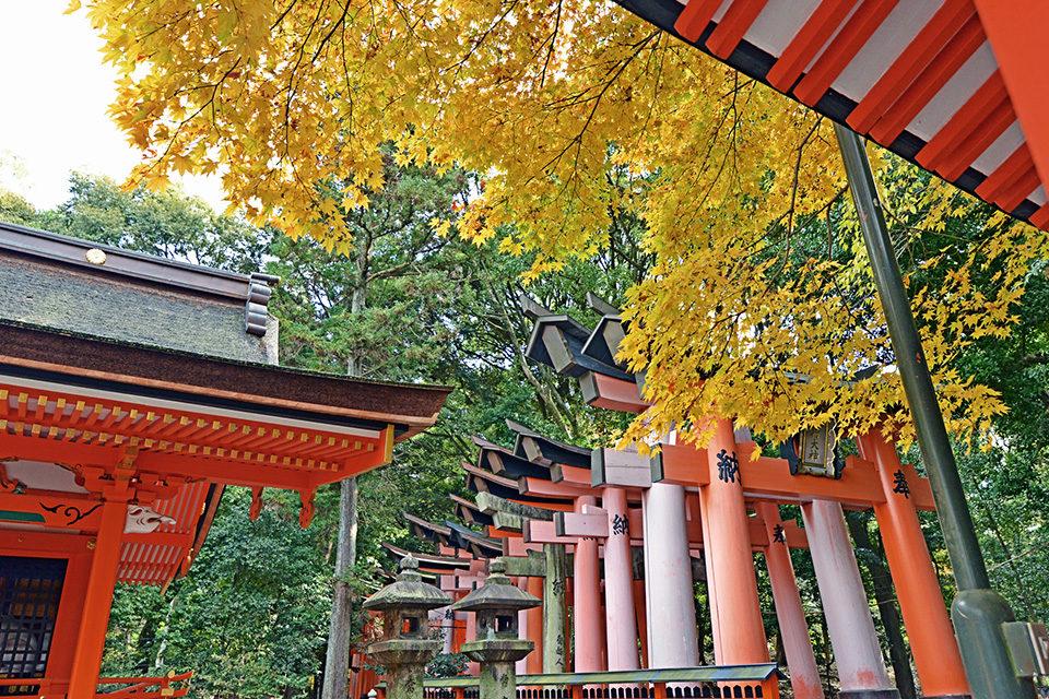 渋滞知らずの京都観光は可能なの? 電車(と若干の徒歩)だけで行ける観光スポット大集合