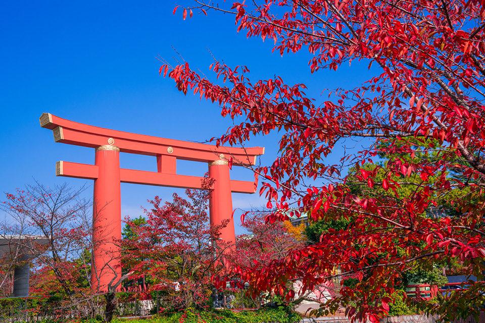 平安神宮の大鳥居と紅葉