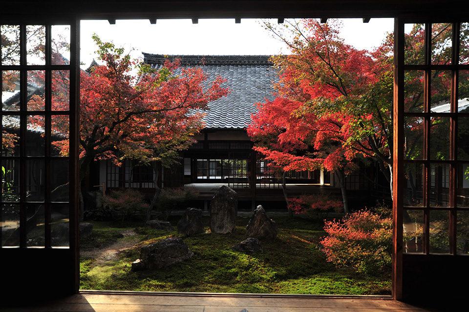 秋の建仁寺の潮音庭