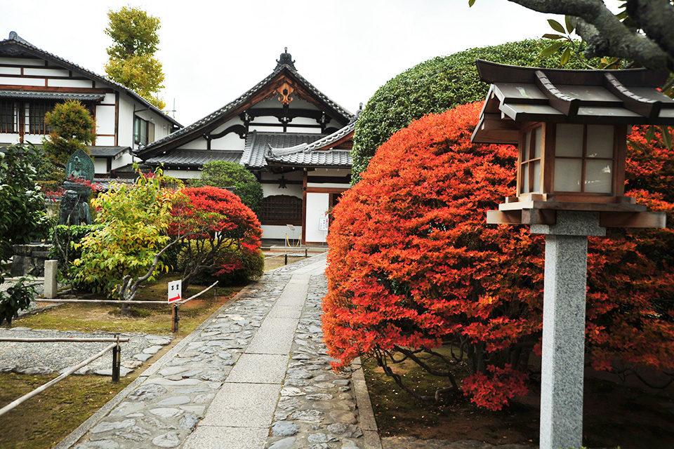 弘源寺の秋