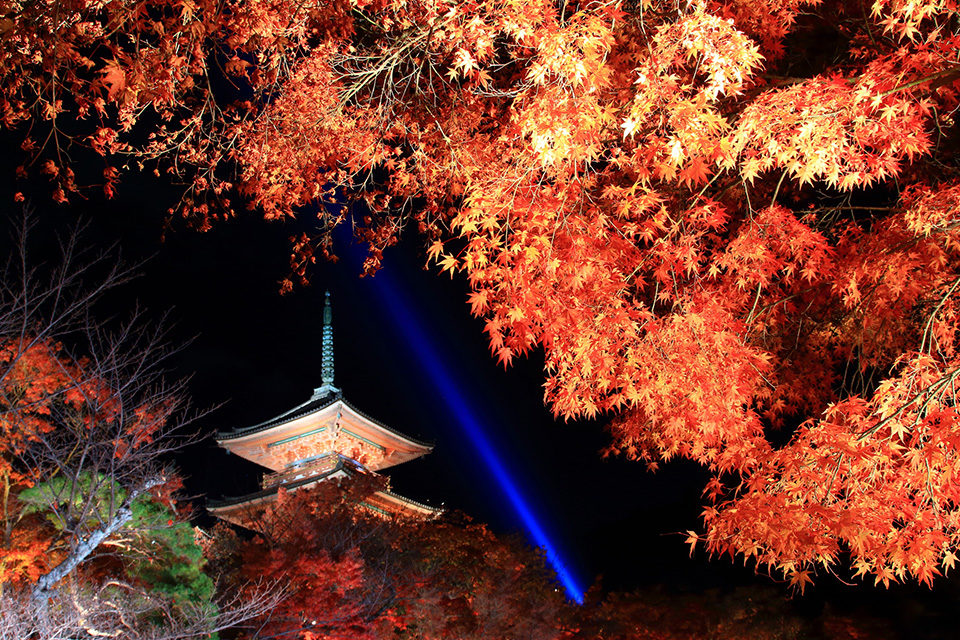 NO2: Famous and crowded Kiyomizu-dera Temple, enjoy the night lighten-up event