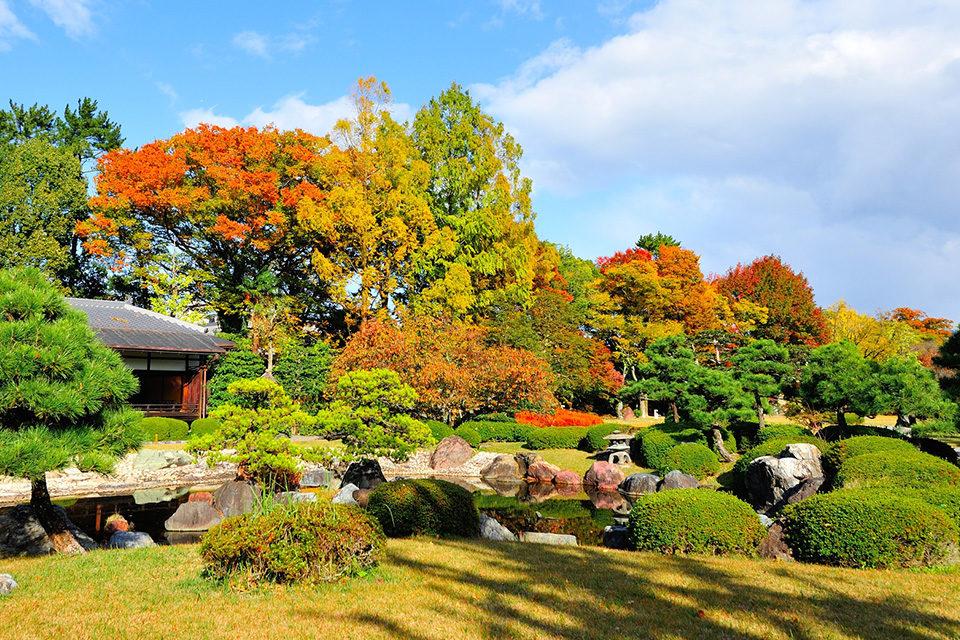 清流園の紅葉