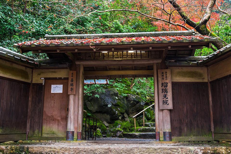 京都紅葉スポットの新定番!瑠璃光院に行ってみましょう