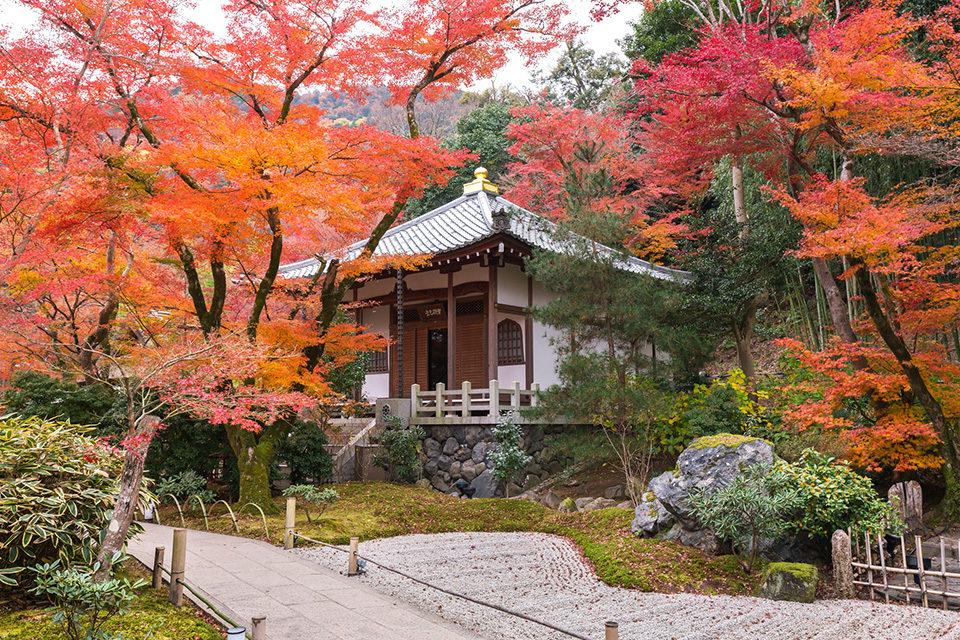秋の宝厳院