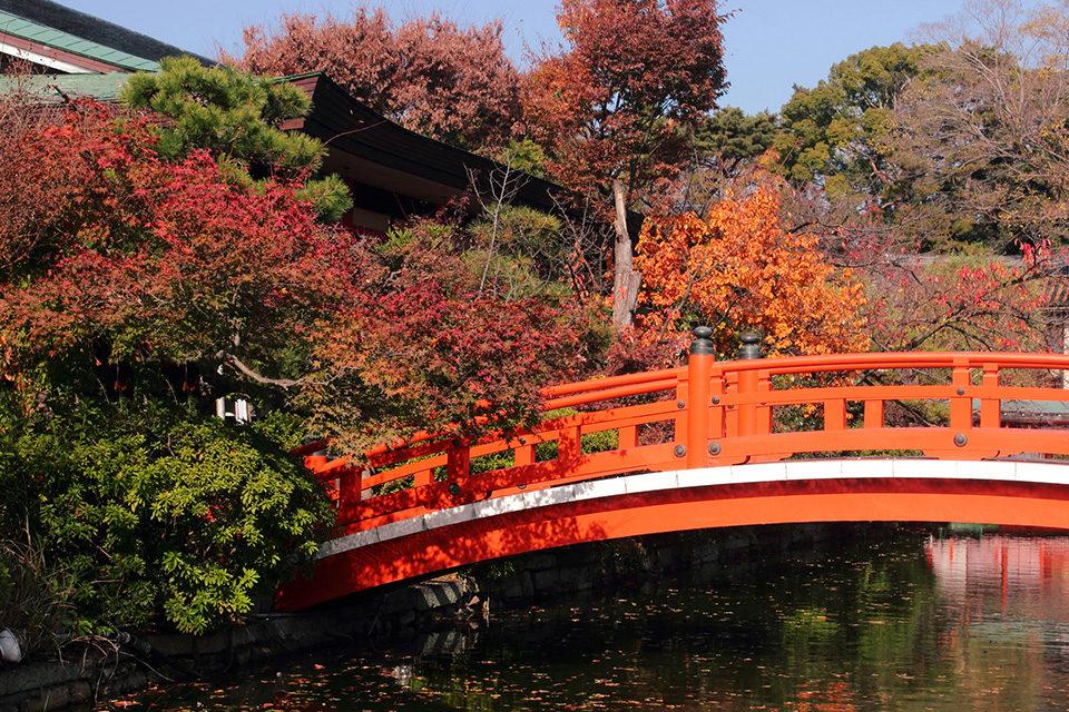 京都の秋の神泉苑