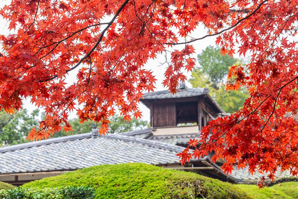 秋の詩仙堂