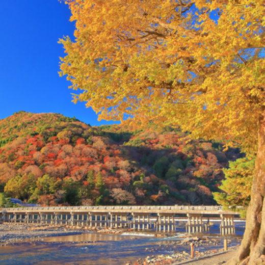 紅葉の嵐山渡月橋