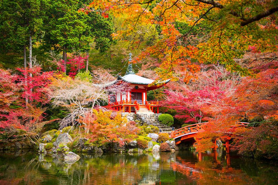 花の季節だけではない、秋には秋の美しさ。世界遺産、醍醐寺の楽しみ方をまとめてご紹介