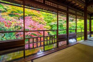 不僅是有名的地方。在蓮華寺的實相院,····· 也有京都的秋天人氣急劇上升的景點。