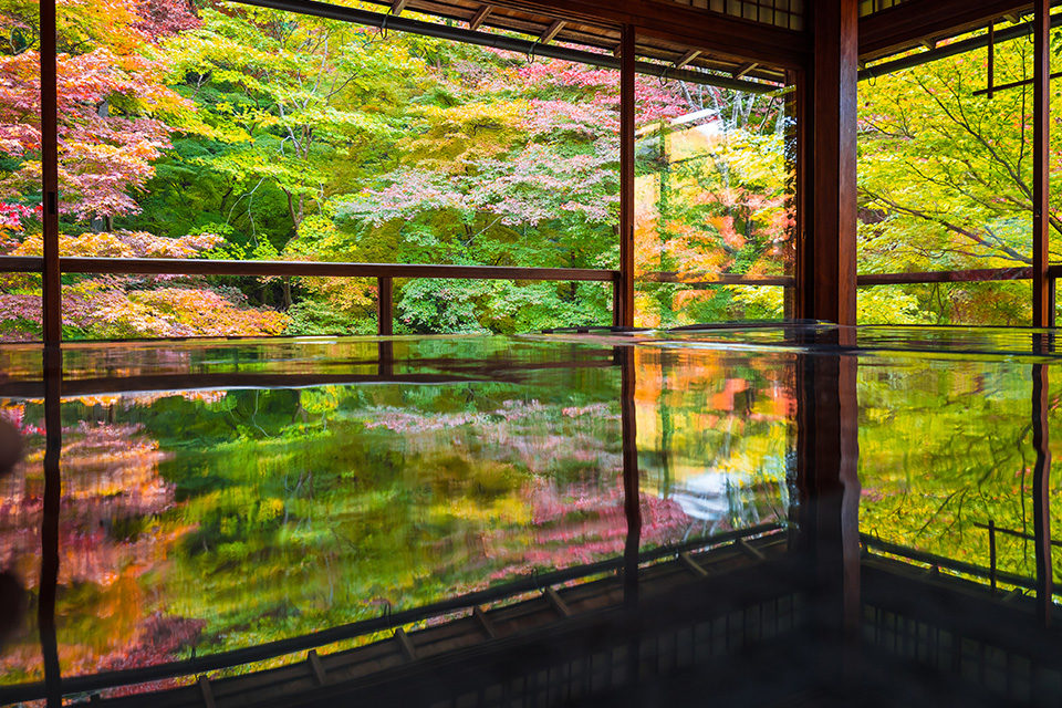 瑠璃光院 京都