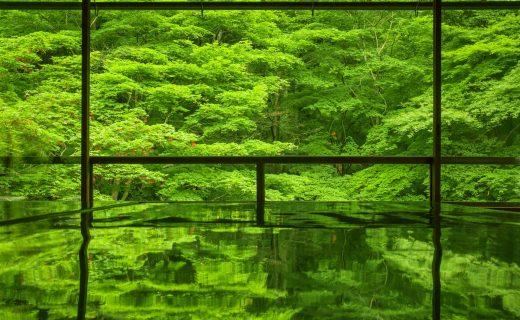 瑠璃光院 京都 ELISIR caede Kyoto/ エリシアカエデ京都