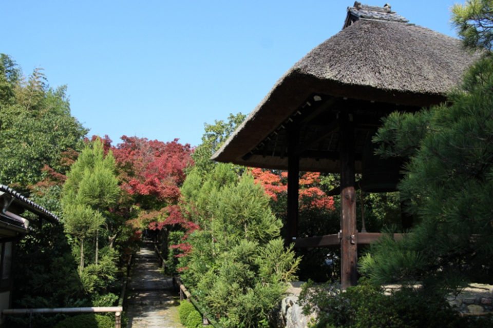 植治の庭の紅葉