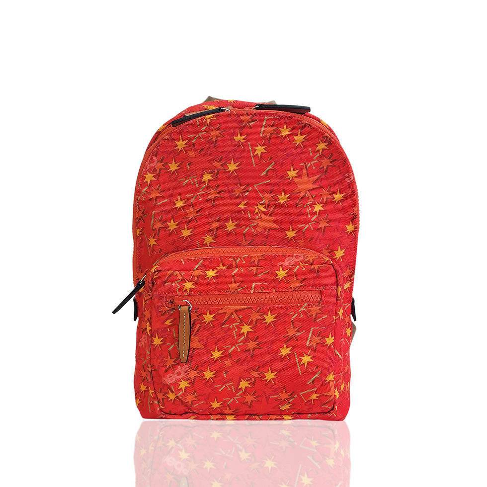 京都限定のELISIR caede KYOTO | エリシアカエデ京都のバッグシリーズ Stella Tre COLOR:RED