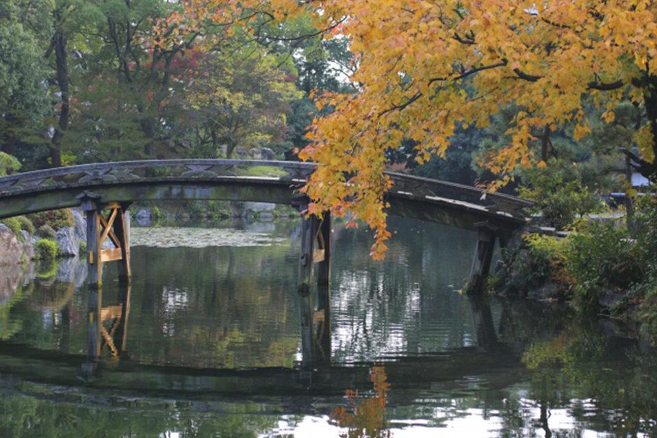 京都紅葉のお寺