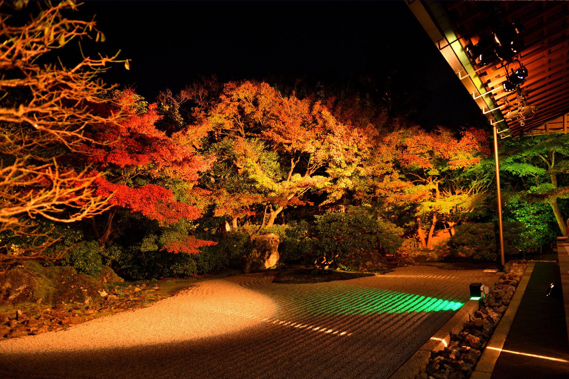 圓徳院 京都 紅葉