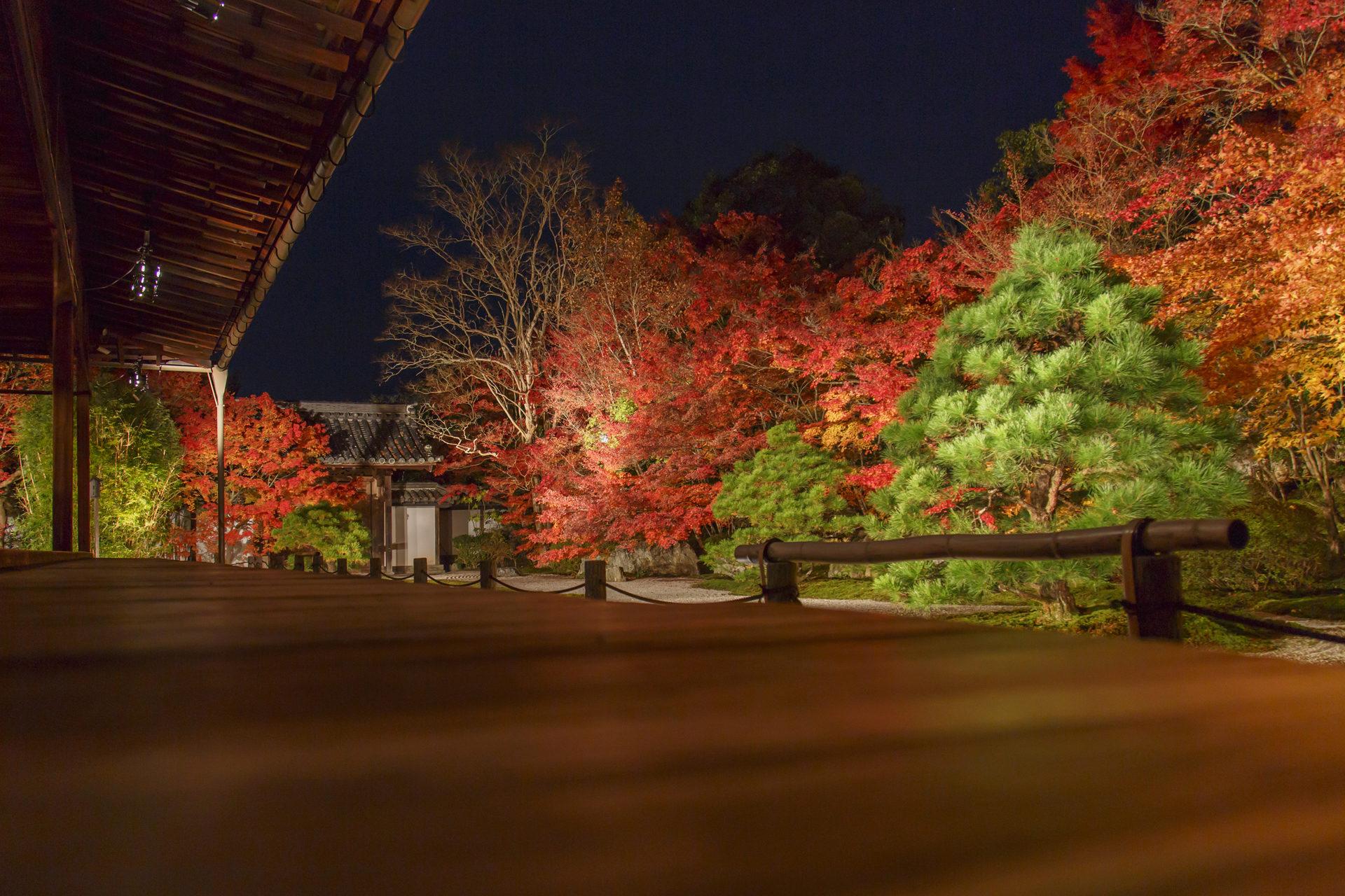 南禅寺天授庵:紅葉ライトアップ