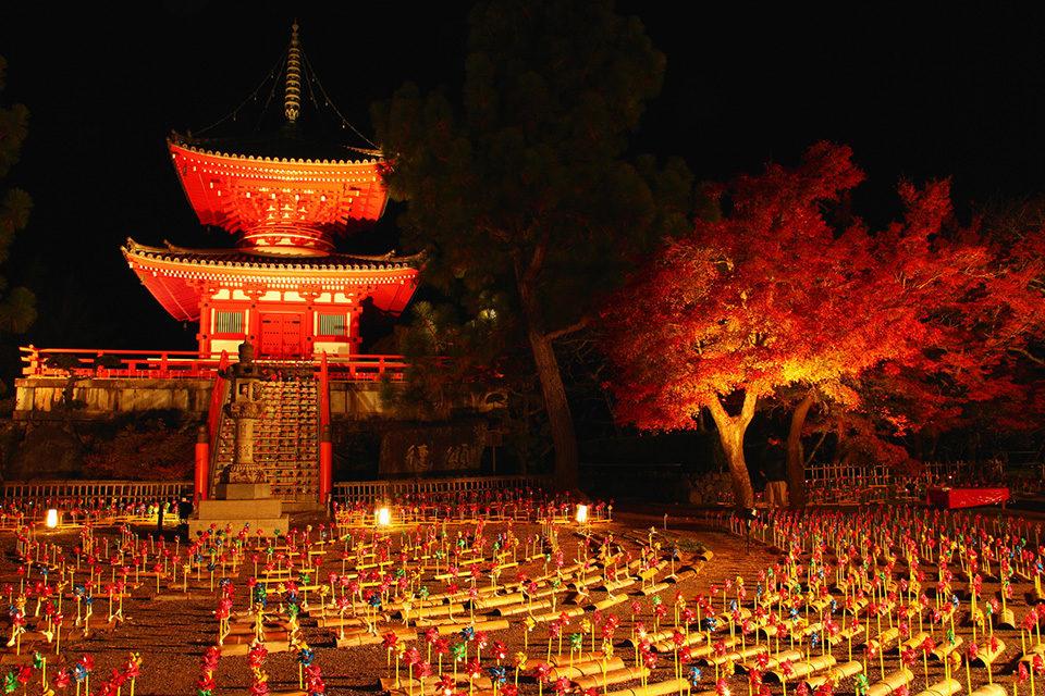 大覚寺ライトアップ