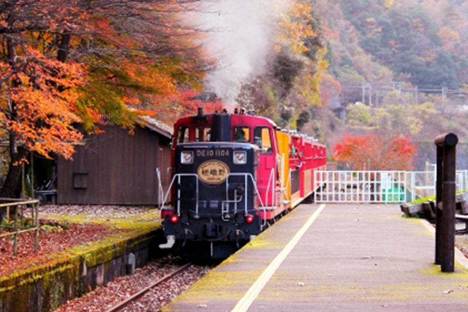海外でも評判の嵯峨野観光鉄道トロッコ列車。風光明媚な保津峡に沿った路線の見どころと利用上の注意点。