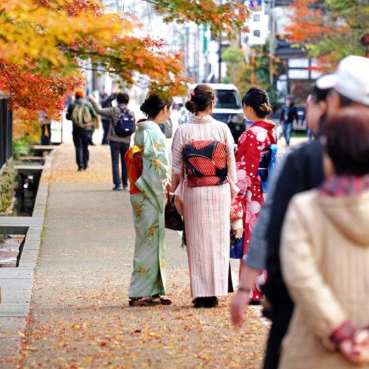 京都紅葉旅行