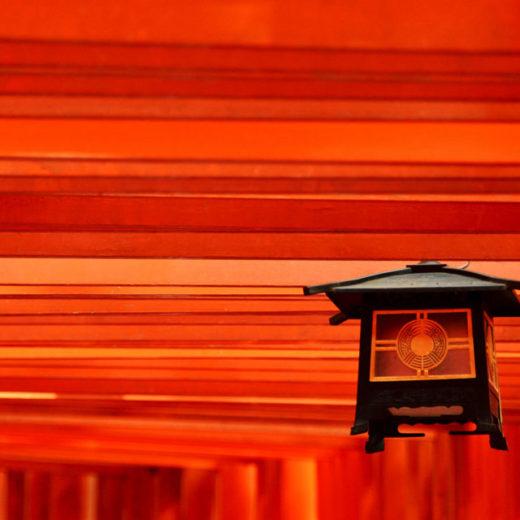 京都紅葉千本鳥居
