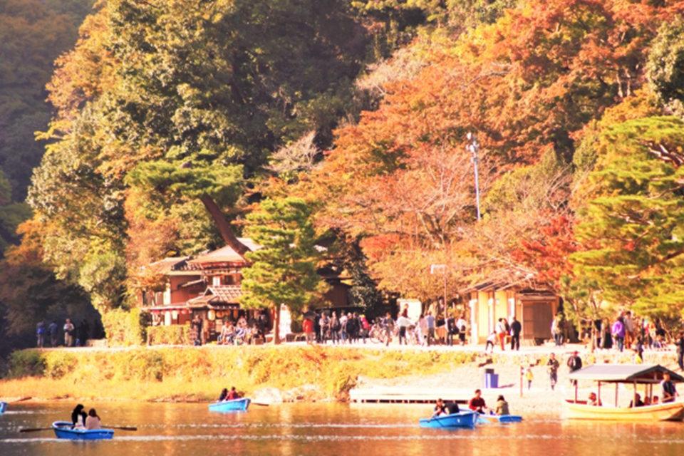 神社仏閣の紅葉も車窓の紅葉も悪くはないですが、遊覧船に揺られながら眺める秋色にはまた格別な味わいがあります