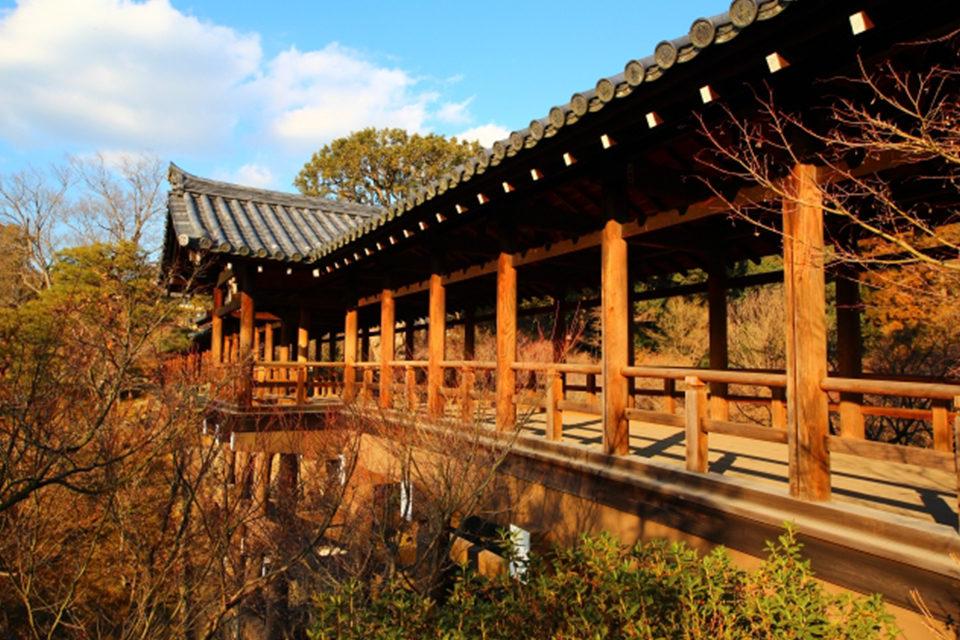 渡り廊下からの眺めが美し過ぎる・・・!京都屈指の紅葉の名所「東福寺」の紅葉
