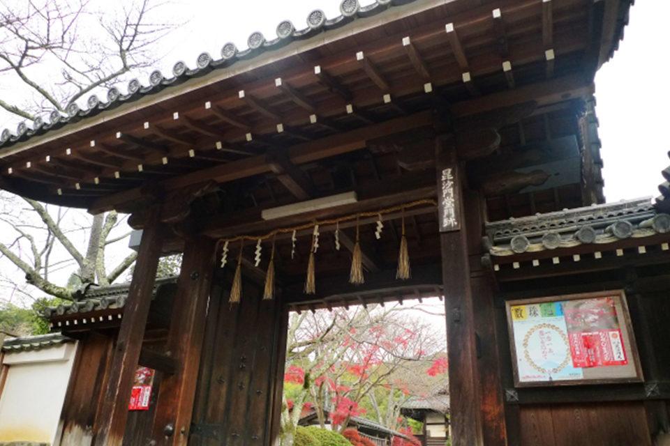 京都・山科毘沙門堂で紅葉を楽しむ!最も紅葉が美しいとされる見ごろや見どころに加えて、気軽に立ち寄れる周辺の観光スポットもご紹介!