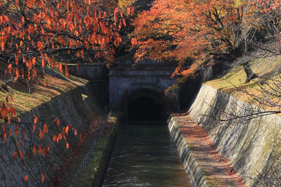 疎水と紅葉の見事な調和は京都ならでは。疎水と紅葉を一緒に楽しむことができる名所をご紹介!