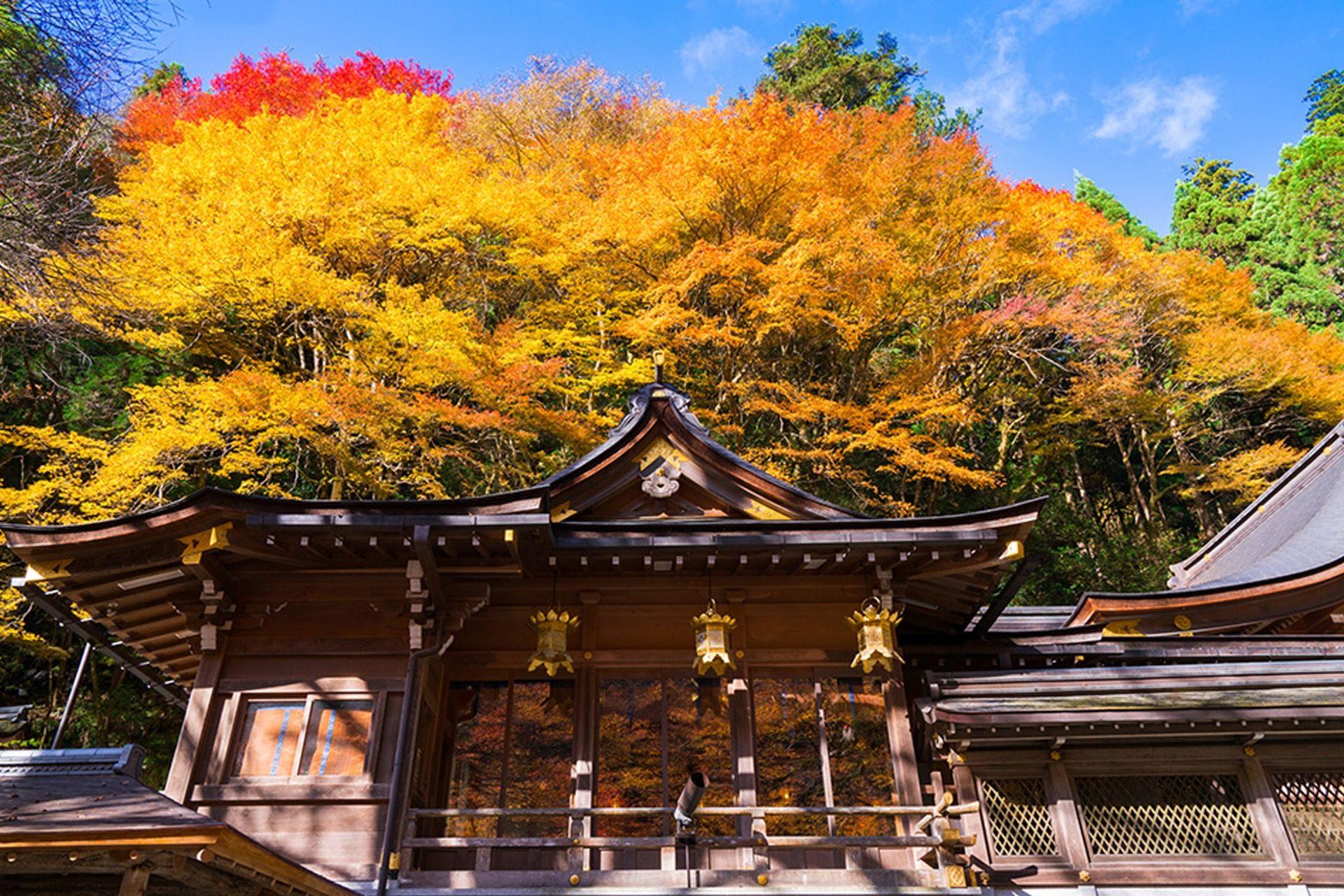 貴船神社 京都 紅葉