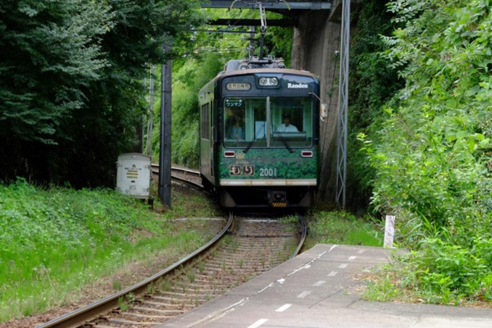 京都の街なかと嵐山を繋ぐ路線として知られる嵐電は、紅葉スポットの渡り歩きを可能にする強力なツールです