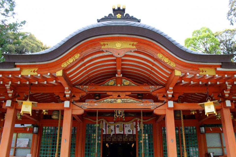 滝の音と共に美しい京都の紅葉を堪能!長岡天満宮をはじめ、ライトアップも楽しめるおすすめの名所をご紹介!