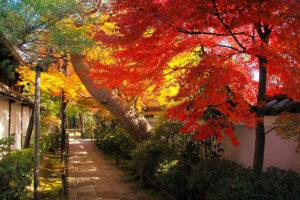 庭園からの参道
