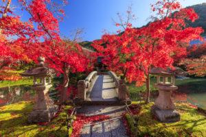 永観堂の紅葉