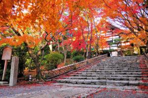秋の龍安寺