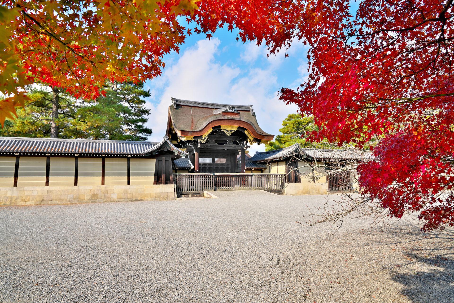 錦秋の京都御苑