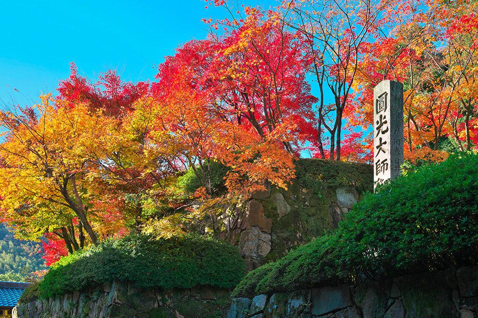 錦秋の光明寺