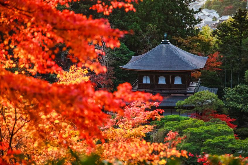 銀閣寺 紅葉 京都