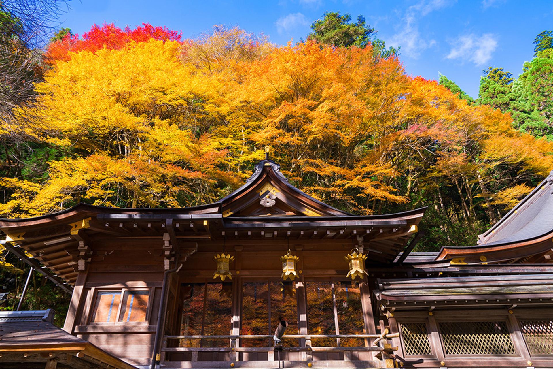 京都 紅葉 貴船
