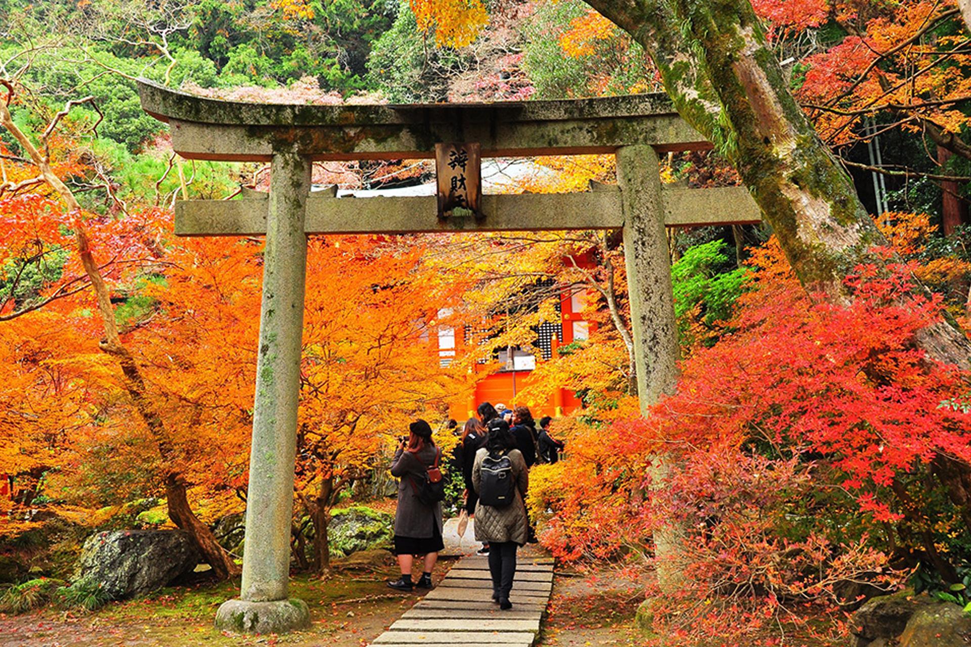 毘沙門堂門跡 京都 紅葉