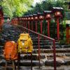 Numero caede京都