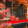 maikogarden caede京都