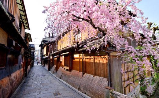 祇園-春-風景