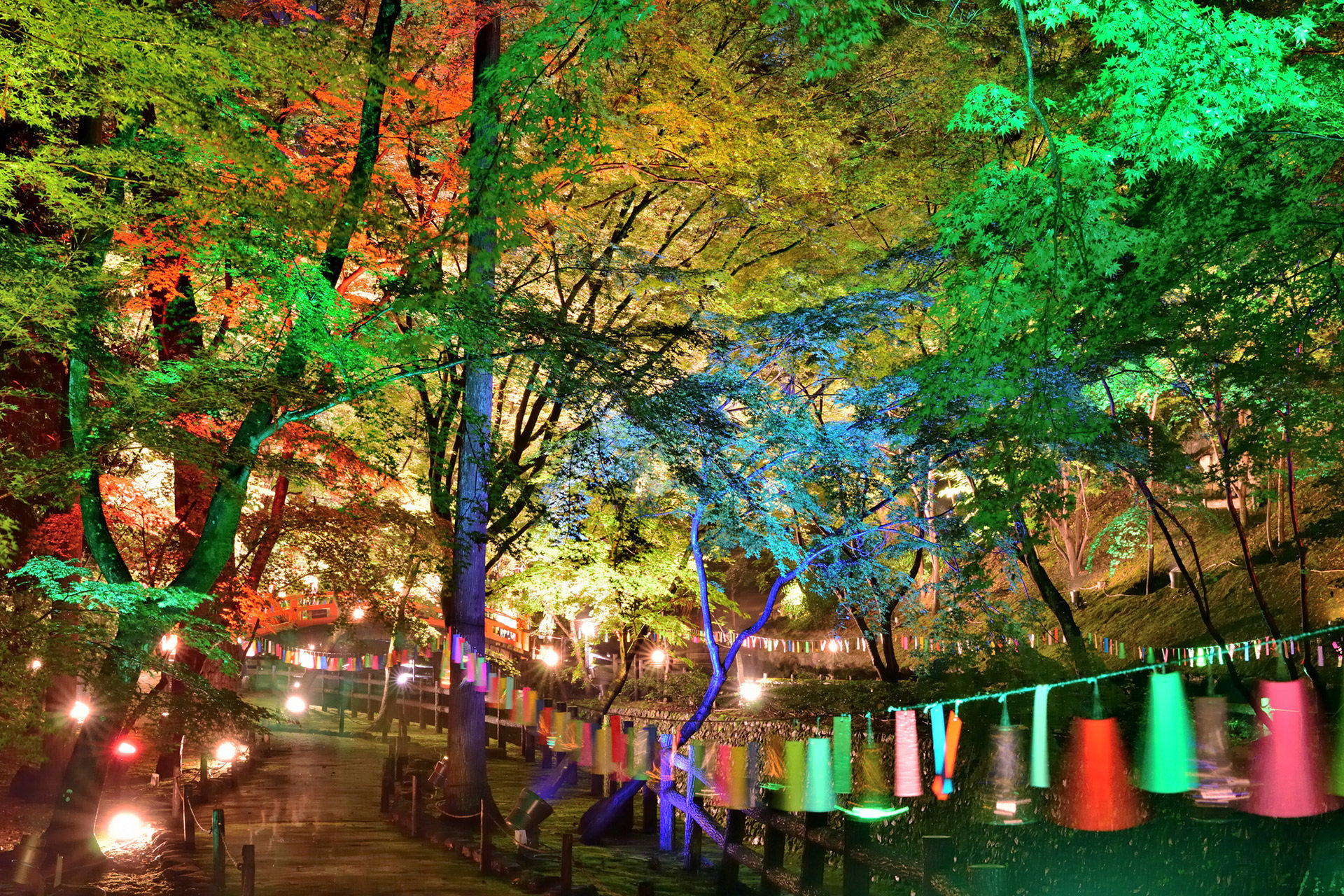 京の七夕-ライトアップ