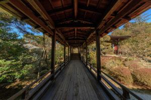 京都-仁和寺-イメージ