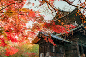 京都-南禅寺-紅葉
