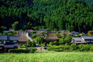 京都-夏-美山