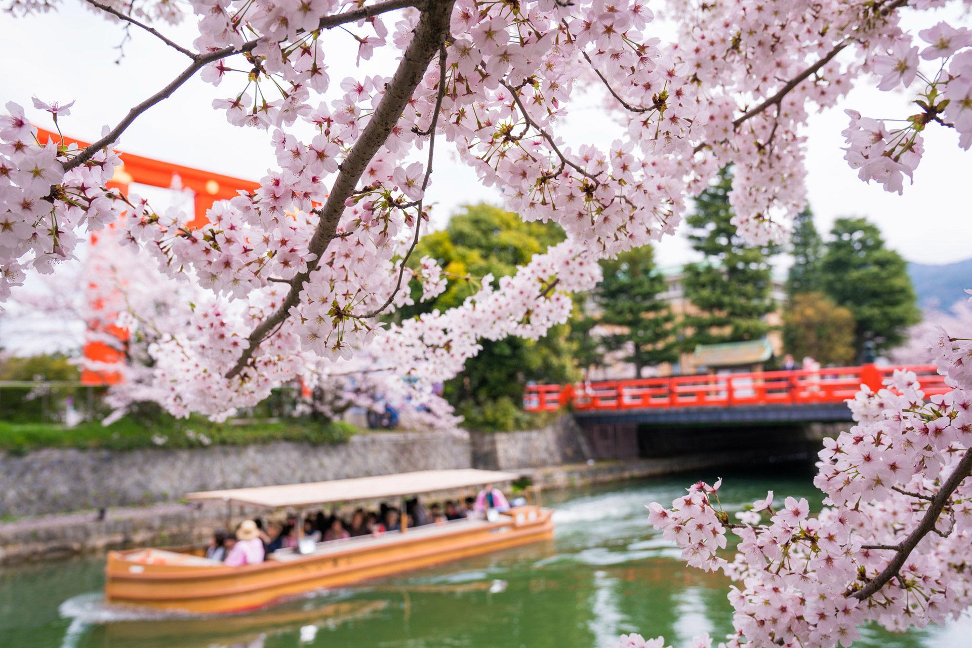 京都-岡崎疎水-舟