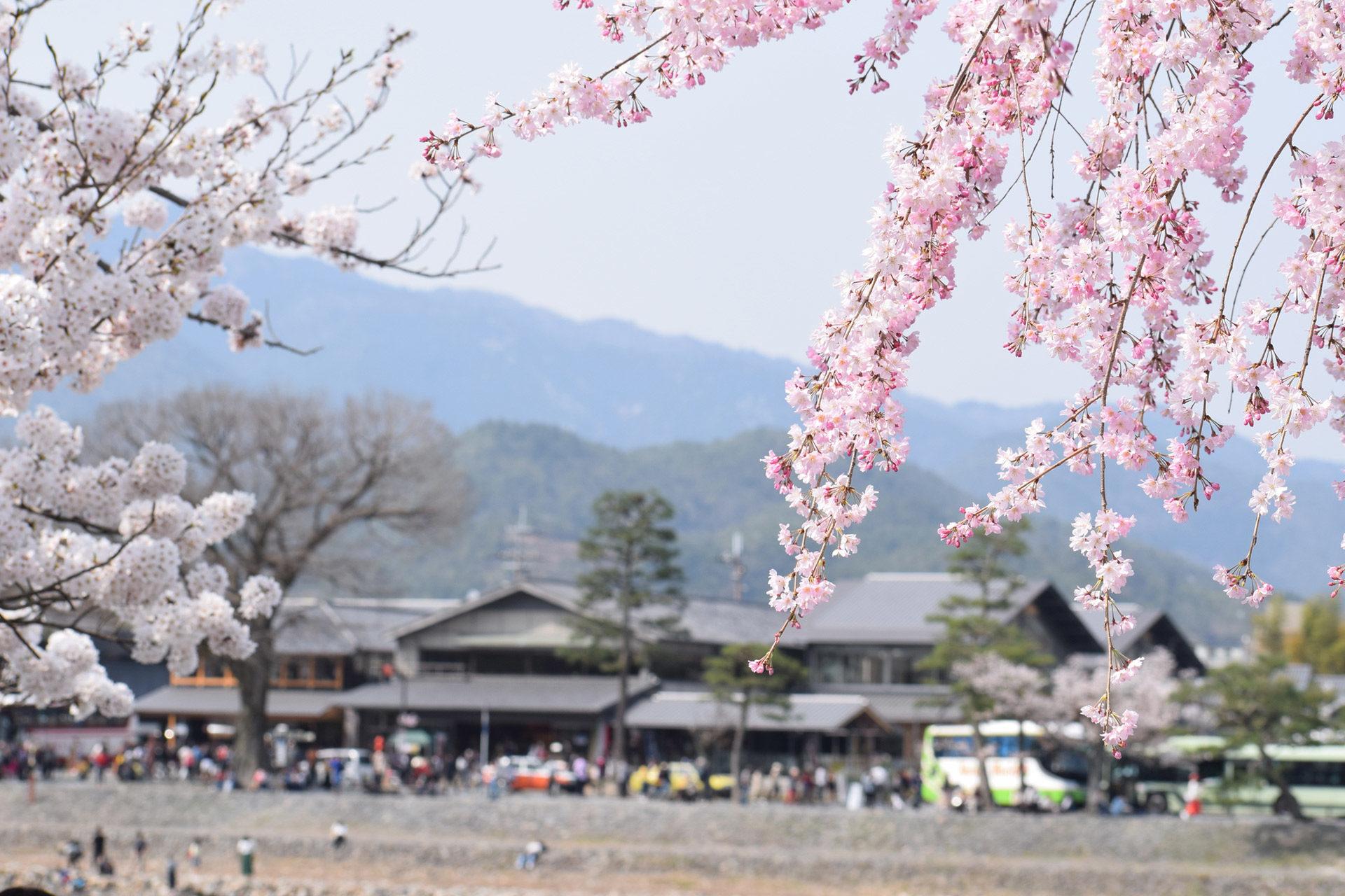 京都-嵐山-イメージ
